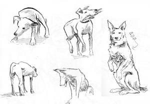 sketchbook_121008