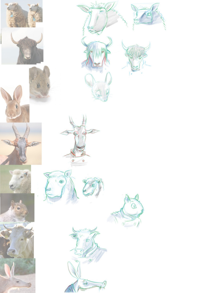 animal practice 01